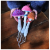 multicolor_mushrooms_hands_1024.jpg